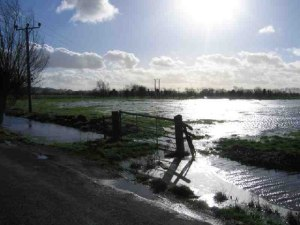 http://commons.wikimedia.org/wiki/File:Flooded_Levels_-_geograph.org.uk_-_93979.jpg